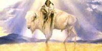 whiteBuffalo Calf Woman
